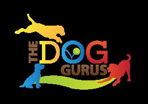 DogGurusColor3
