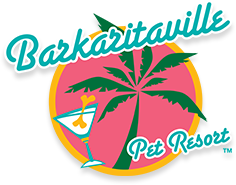 "A green palm tree over a pink circle with yellow outline that reads, ""Barkaritaville: Pet Resort"" on it, with a small cocktail glass that has a bone sticking out of it off to the side."
