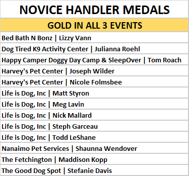 novice gold in all 3 events