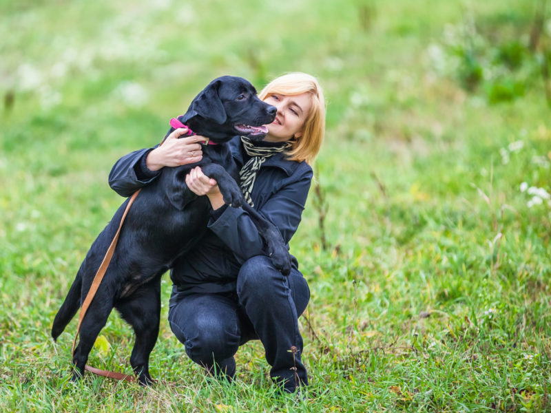 Woman holding black lab in a field