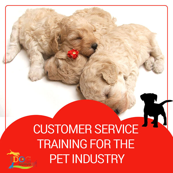 customer service training for pet industry