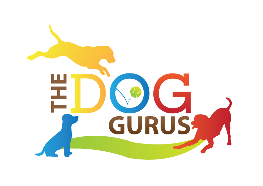 Yellow, red, blue, green, and brown The Dog Gurus logo.