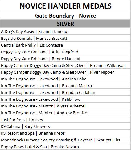 novice gate boundary silver