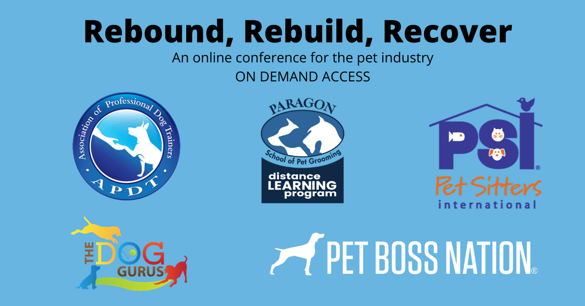 rebound rebuild recover 7