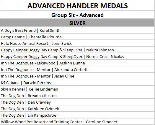 advanced group sit silver