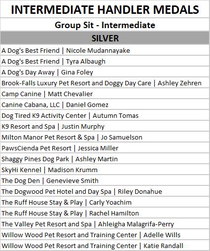 intermediate group sit silver