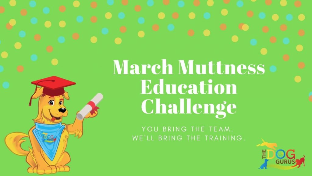 march muttness education challenge cover