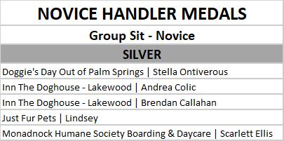 novice group sit silver