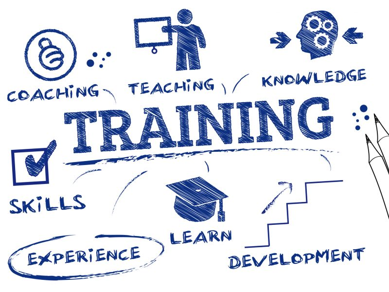 5 Tips for Creating a Staff Training Program for Your Pet Business